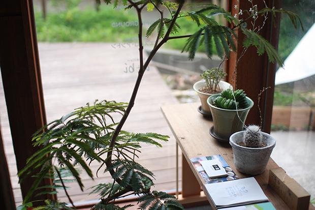 かざはやファクトリー植栽